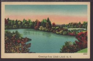 Greetings From Lime Lake,NY Postcard