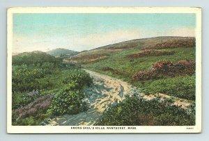 1932 Saul's Hills Nantucket Sand Walk Beach Massachusetts MA Postcard