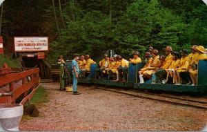 Michigan Iron Mountain The Iron Mine