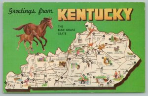 Kentucky~Blue Grass State~Horses~Map~Vintage Postcard