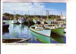 Famous Maritime Scallop Fleet, Photo E Otto, Saint John News Company