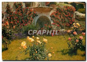 Modern Postcard Le Cannet French Riviera Yakymour