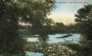 Tecumseh, Michigan, MI, The Standish Pond, 1914 Vintage Postcard g8912