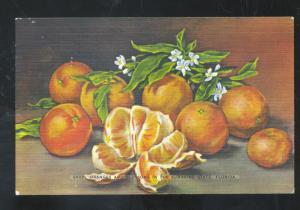 LARGO FLORIDA DEL WORTH FRUIT CO. VINTAGE ADVERTISING POSTCARD ORANGE ORANGES