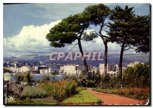 Modern Postcard The French Riviera Cannes M The great palaces on the Croisett...