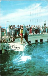 1957 Fort Walton Beach Florida Gulfarium Roadside Attraction Dolphin Postcard FR