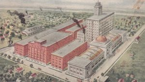WINONA, Minnesota, 1900-10s; The J. R. Watkins Medical Company
