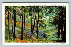 Anderson IN-Indiana, Scenic Greetings Indian Mounds State Park Linen Postcard