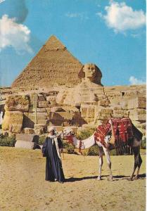 Camel, The Great Sphinx and Khephren Pyramid, Egypt, 50-70´s