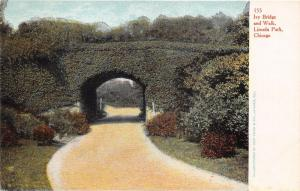 Chicago Illinois~Lincoln Park~Ivy Bridge & Walk~Looking Through Tunnel~c1905 Pc