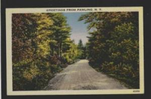 NY Greetings from PAWLING NEW YORK PC Postcard