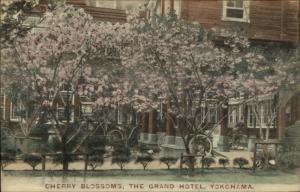 Yokohama Japan Grand Hotel Cherry Blossoms c1910 Postcard
