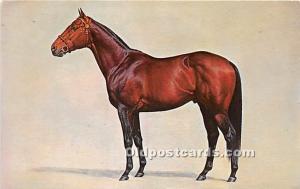 Gallant Man, Mr Comb's Spendthrift Farm Horse Racing 1960