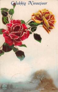 Roses Flowers Greetings 1925