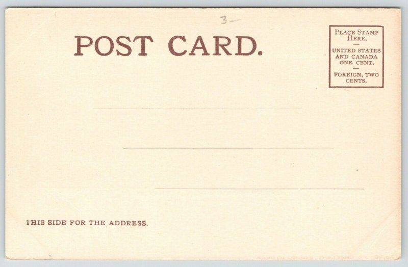 Duluth Minnesota~Point & Harbor~Birdseye From Big House on Hill~c1905 VO Hammon