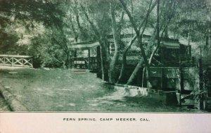 Fern Spring, Camp Meeker, CA Ice Cream Park Sonoma Co. c1910s Vintage Postcard