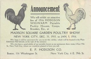 Madison Square Garden Poultry Show New York City, USA Chicken Unused indentation