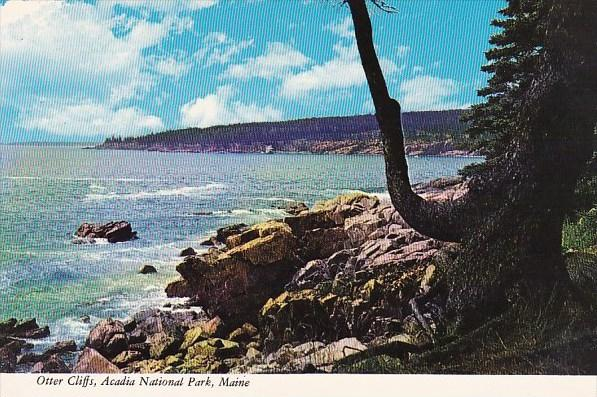 Otter Cliffs Acadia National Park Maine