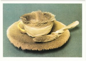 Object - Fur Covered Cup and Saucer by Meret Oppenheim Surrealist Art Postcard