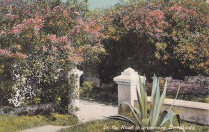 BERMUDA, 1900-1910s; On The Road To Grasmere