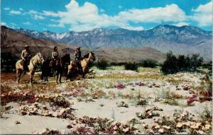 People Horseback Desert Indio CA near Shields Date Gardens Muench Postcard D93