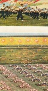 PEKING , China , 1965 ; Stadium ; Song in Praise of the Revolution show; 12 P...