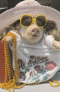 Dressed Pig , 1950-70s