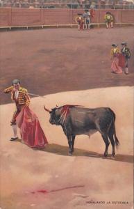 Bull Fight Senalando La Estocada