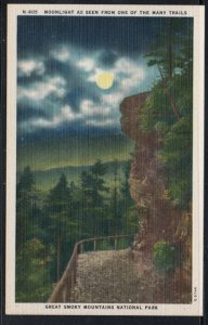 Linene Colour PC Moonlight from Trail Great Smoky Mtns Nat Park, unused
