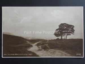 West Yorkshire: ILKLEY The Moors Above White Wells c1914 RP Postcard By Judges