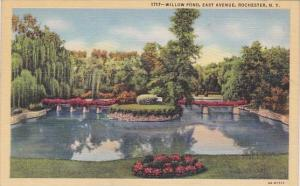 Willow Pond East Avenue Rochester New York