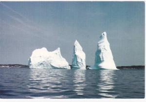 Twillingate Island , Canada , 50-70s Iceberg #1