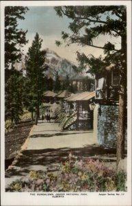 Jasper National Park AB Bungalows Tinted Real Photo Postcard #17