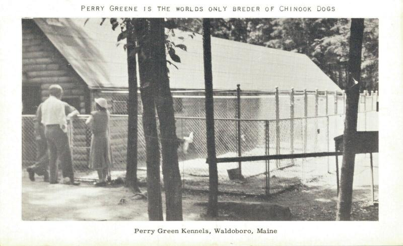 USA Perry Greene Kennels Waldoboro Maine 01.63