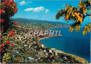 Postcard Modern Riviera Del Fiori Sanremo Panorama West
