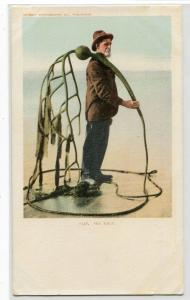 Sea Kelp Gathered By Beachcomber Detroit Publishing Co 1905c postcard