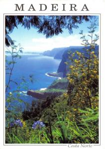 Postcard MADEIRA Costa Norte, The North Coast as seen from Faial #483