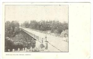 The Rosedale Ravine Bridge,Toronto,Canada,PU-1905