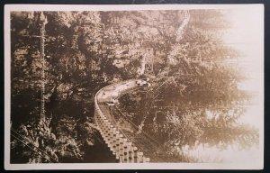 Mint Lynn Canyon Suspension Bridge Vancouver BC Canada Real Photo Postcard RPPC