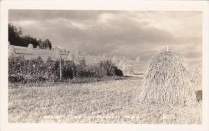 RP; Harvest Time near FAIRBANKS,, Alaska, 1930-1950