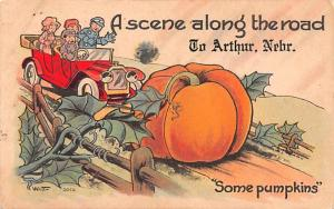 Along the Road to Arthur, Nebraska, Pumpkins, Witt 1917