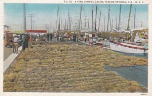 Florida Tarpon Springs A Fine Sponge Catch 1939 Curteich