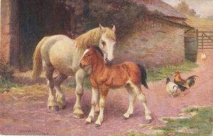 EDWIN BOTTOMLEY.  Mare and foal. Horses Nice J. Salmon postcard