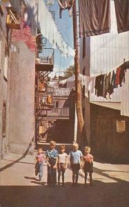 Canada Quebec Sous Le Cap Street Wash Day