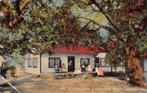 Alpine California The Willows Mountain Resort Vintage Postcard J926507