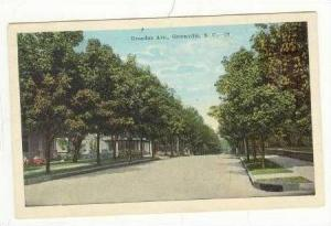 Tree-Lined Broadus Avenue, Greenville, South Carolina, 10-20s
