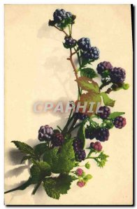 Old Postcard Blueberries