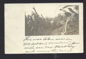 RPPC BERTHAVILLE WEST VIRGINIA ASHTON FARMING CORN FIELD REAL PHOTO POSTCARD