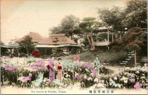 Vtg Postcard.1907-10's Geisha Ou Bijin Jeune Femme En Iris Jardin Horikiri Tokyo