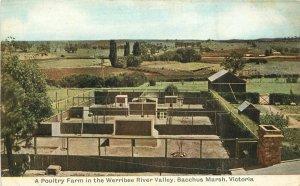 Australia C-1910 Farm Agriculture Postcard Osboldstone postcard 11301